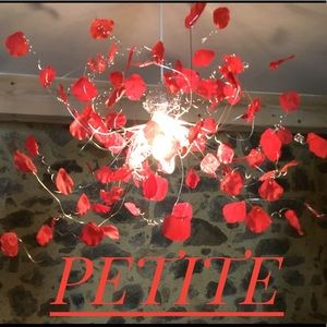 Other - All things PETITE